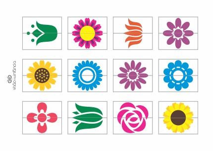 pareamento-flores-metades2