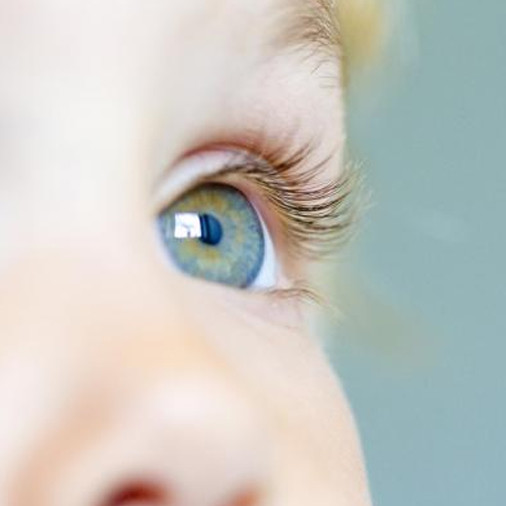 visão na infância