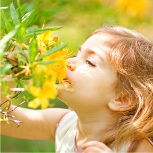 estimular para desenvolver o olfato