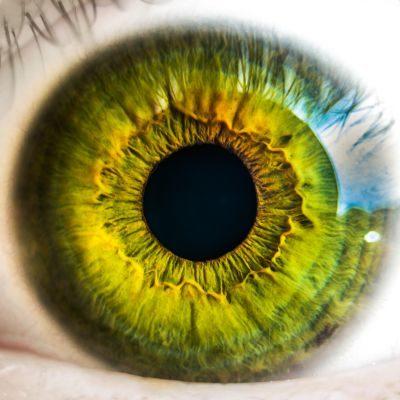 Como funciona a pupila e quais suas funções?